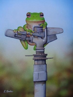Frog on Sprinkler2010 (300x400)